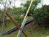 tricolor_web_4